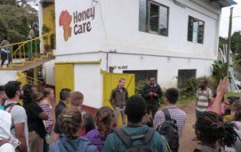 Honey Care, Social Enterprise, Kenya