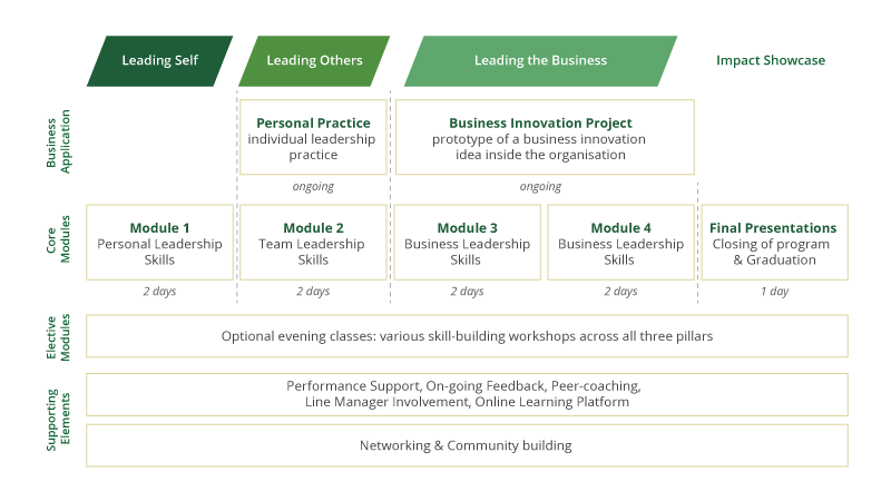 Amani Leadership & Management For Impact – Amani Institute